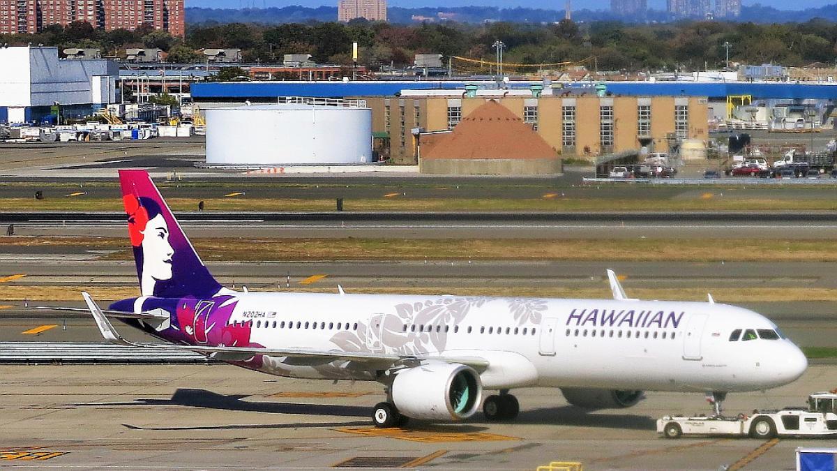 Denuncia a una aerolínea tras la muerte de su perro en la bodega durante un viaje